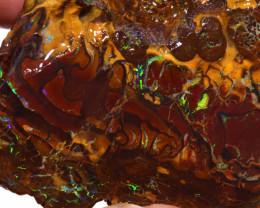 Boulder Opal Rough From Opalton **DO-3338 - downunderopals