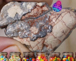 #1 CANDYSHOP Lightning Ridge Gamble Rough Opal  [41290]