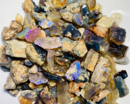 720 Cts Collectors Opalized Woods