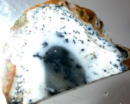 DENDRITIC OPAL ROUGH  [S631 ]