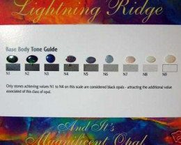 9 OPALS ON BODY TONE BUYING GUIDE FROM OPAL ASSC