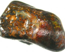 YOWA NUT SPECIMEN WITH TOP PATTERN 105CTS [BMA691 ]