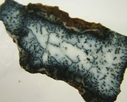 DENDRITIC OPAL ROUGH [FJP 2719]