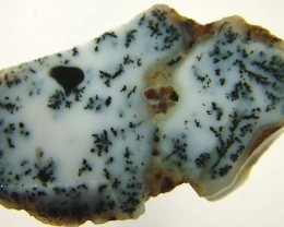 DENDRITIC OPAL ROUGH [FJP2723 ]