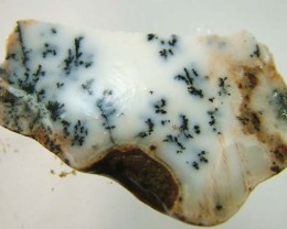 DENDRITIC OPAL ROUGH  [FJP2731 ]