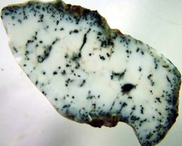 DENDRITIC OPAL ROUGH   [FJP 2734]
