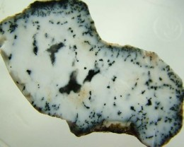 DENDRITIC OPAL ROUGH [FJP2737 ]