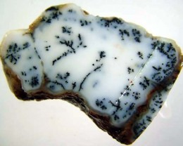 DENDRITIC OPAL ROUGH[FJP2751 ]