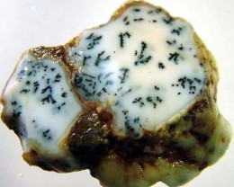 DENDRITIC OPAL ROUGH  [FJP 2753]
