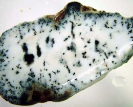 DENDRITIC OPAL ROUGH  [FJP2762 ]