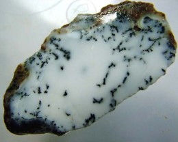 DENDRITIC OPAL ROUGH [FJP2765 ]