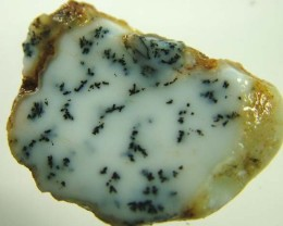 DENDRITIC OPAL ROUGH [FJP2795 ]