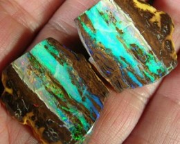 (ROR) BOULDER OPAL CRYSTAL PIPE SPECIMEN VeryBright 57.10 CT