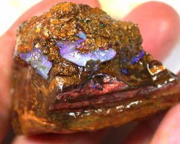 BOULDER OPAL ROUGH 2.45OZ GR423