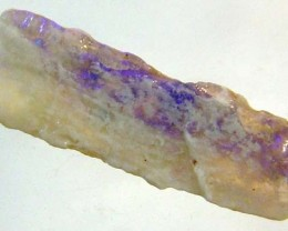 1.70 CTS OPALISED FOSSIL WOOD  FO-88