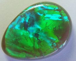 N3-2 CTS BLACK OPAL L RIDGE AMAZING FLASH   NC-4647