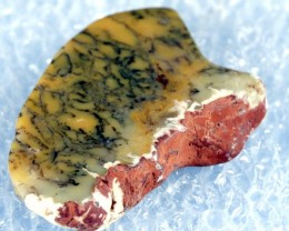 Beautiful Norseman Moss Opal Slab Gold with Black Marks MO2