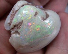 OPAL  SHELL   77CTS FO213