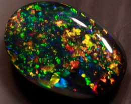 GEM QUALITY BLACK OPAL FROM THE RIDGE- 1.25 CTS