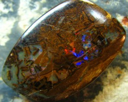 WOODY FOSSIL STONE WITH RED BLUE FLASH IN THE CENTRE