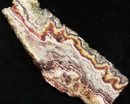 UTAH LACE AGATE SLAB 321.95 CTS [VS5229]