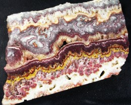 UTAH LACE AGATE SLAB 442.75 CTS [VS5233]