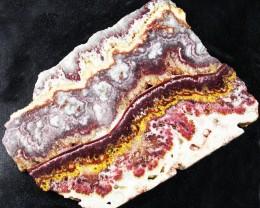 UTAH LACE AGATE SLAB 349.60 CTS [VS5234]