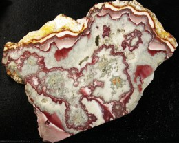 UTAH LACE AGATE SLAB 423.75 CTS [VS5237]
