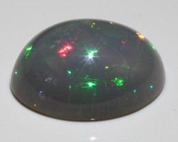 Rare Black WELO Opal with Harlequin and Honeycomb pattern !
