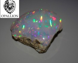 RARE GEM crystal WELO Opal with fossils ! 9,4 carats ! NR !