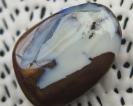 COLOURMINE OPALS>15.30.cts DRILLED LOVELY BOULDER OPAL