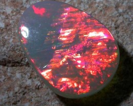 1.47 CTS LIGHTNING RIDGE OPAL -FLASH  -N5[Q1003 ]SH