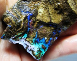 49GMS  OWN PART OF BOULDER HISTORY-ROUGH OPAL MMM 227