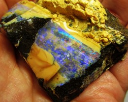 42GMS  OWN PART OF BOULDER HISTORY-ROUGH OPAL MMM 283