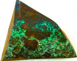 BOULDER ROUGH OPAL 31.45  CTS  DT-1560