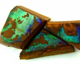 BOULDER ROUGH OPAL 25.05  CTS  DT-1561
