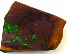 BOULDER ROUGH OPAL 22  CTS  DT-1606