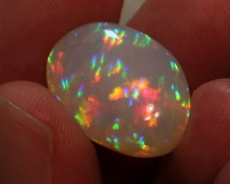 19.58CT COLLECTORS WELO OPAL WITH EXTREME PRISM FIRE 5/5!