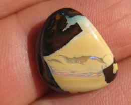 COLOURMINE OPALS>12.70.cts BEAUTIFUL  QUALITY YOWAH NUT OPAL