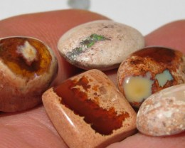 OpalWeb - Mexican Matrix Opal -Parcel 5 stones 40.90Cts.