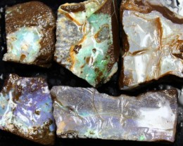 1.80 OZ 5 PCS BOULDER ROUGH-BLOCKED OUT OPAL MINIMAL WASTAGE