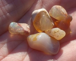 25.51 Cts. Lot (T-11) 6 pcs Tumbled mexican fire opals