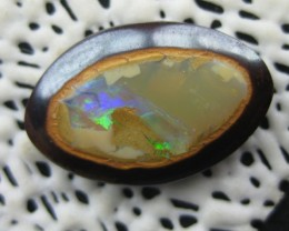 COLOURMINE OPALS>8.80.cts MINER 2U UNIQUE YOWAH NUT OPAL
