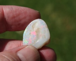 Coober Pedy Opalized Shell 15 carats Multicolored