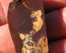 OPALS *110.75ct ROUGH Matrix Opal