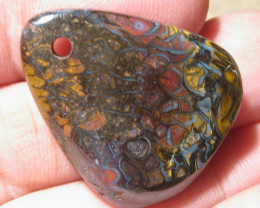 OpalWeb - Drilled Boulder Opals from Koroit - 55.35Cts -