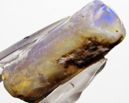 11.50 CTS  FOSSIL BELEMNITE  (FO15)