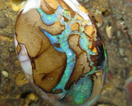 C/O 43cts,WOW! COLOUR AND PATTERN BOULDER MATRIX OPAL.
