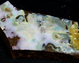 79.60 CTS BOULDER OPAL RUB FACED FOR EASY CUTTING