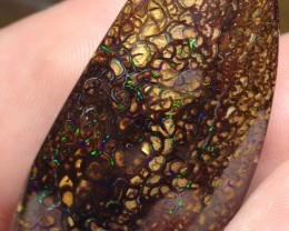 BARGAIN BUY IT NOW Boulder Opal Picture Stone AB295 64.5cts